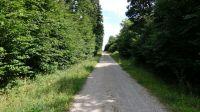 Wanderweg-4007