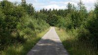 Wanderweg-4009