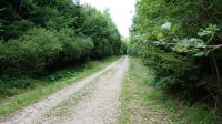 Wanderweg-4013