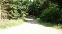 Wanderweg-4015