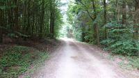 Wanderweg-4016