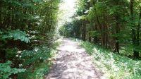 Wanderweg-4018